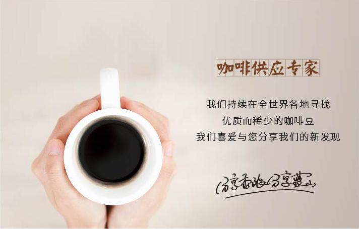 咖啡供应专家