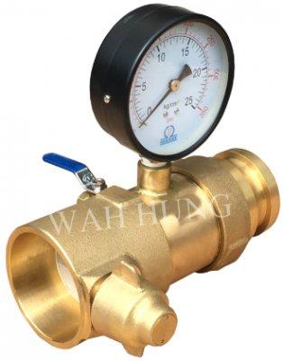 WH038-C 动压磅表(生磅)