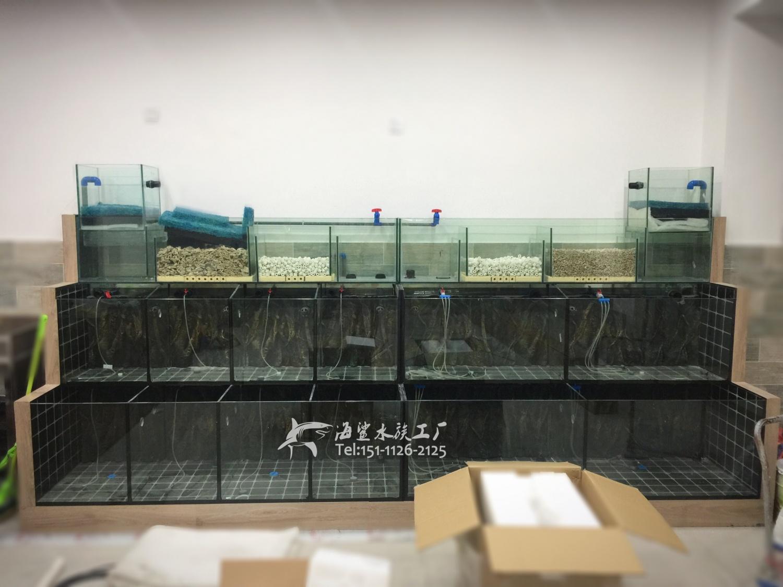 娄底饭店餐厅商用海鲜鱼池水产缸制作 ***海鲨水族工厂