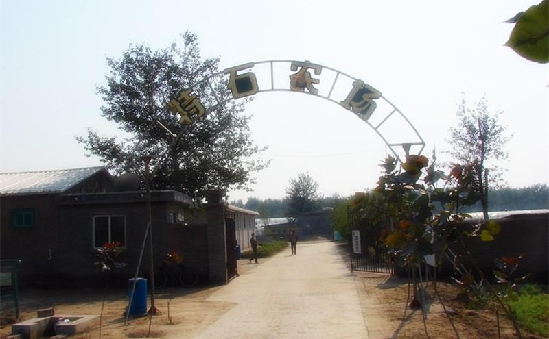 项目案例:山西太原特石有机农场