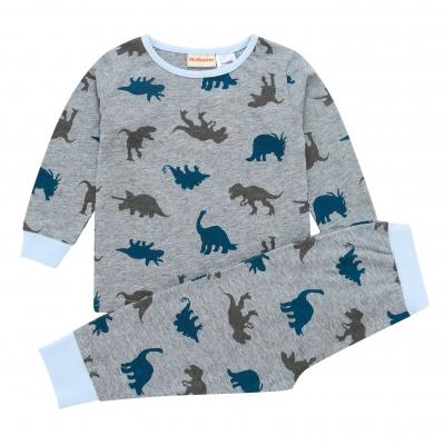 AW1915 Baby Boys Dinosaur Pyjama Set - Grey Marle