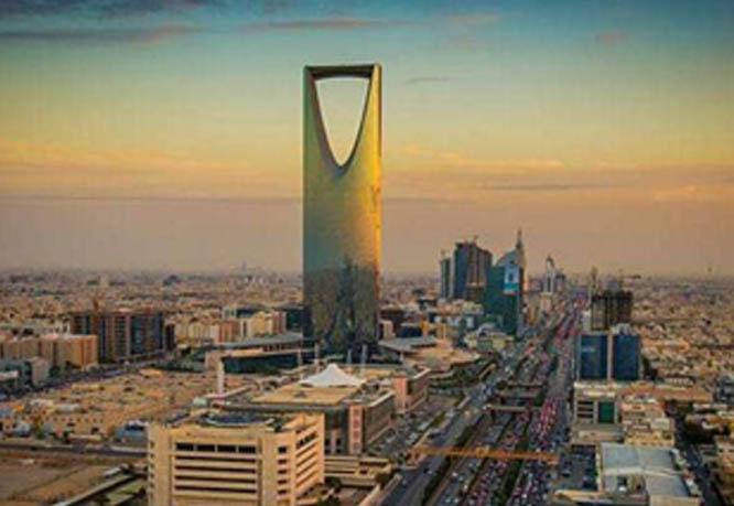 """沙特將醫療納入""""2030愿景""""或..."""