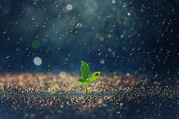 生命绿洲患者援助项目