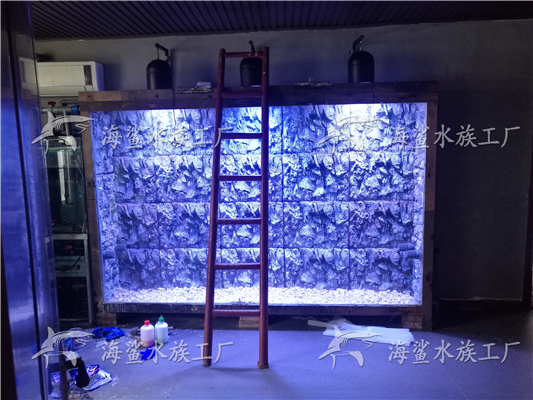 公司3米x2米x0.5米大型靠墙海缸