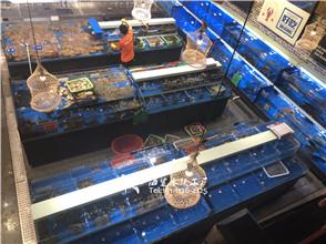 海鲜酒楼饭店海鲜鱼池