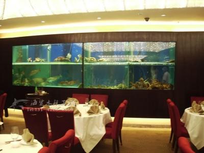 益阳酒店海鲜池