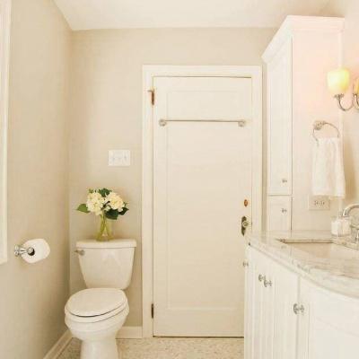 Deodorant for Toilet