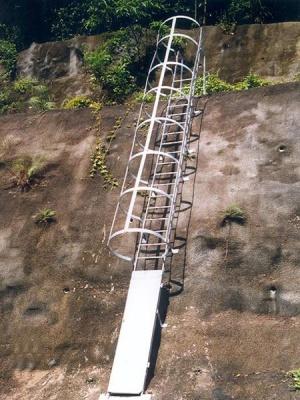 斜坡豬籠梯  Cat Ladder