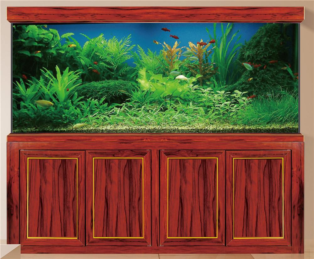 新款木纹龙鱼缸2