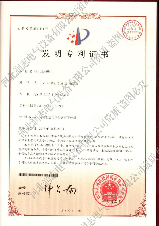 发明创造专利证书(固封极柱)