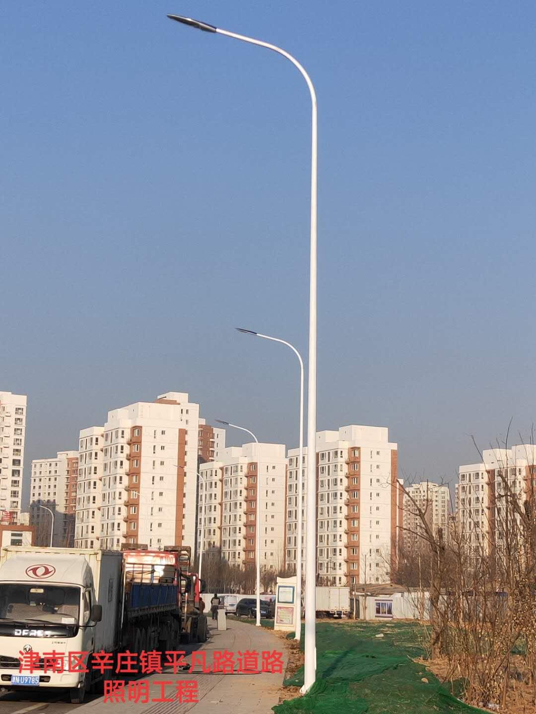 津南區辛莊鎮平凡路道路照明工程