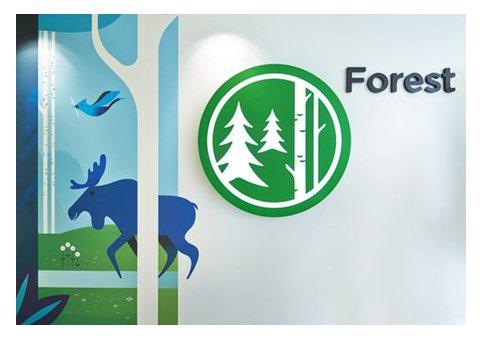 自然中的生活,生活中的自然——森林主题墙绘